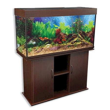 75 gallon aquarium tank only 75 gal premium tank stand for Rectangle fish tank