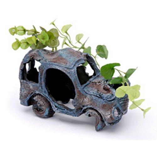 Sunken Gardens Car Wreck - Medium