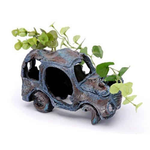 Sunken Gardens Car Wreck - Large