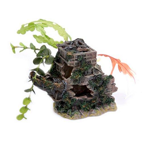 Sunken Gardens Shipwreck Bow - Medium