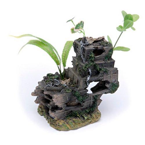 Sunken Gardens Shipwreck Stern - Medium