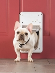 PetSafe Smart Door Electronic Pet Door - Small
