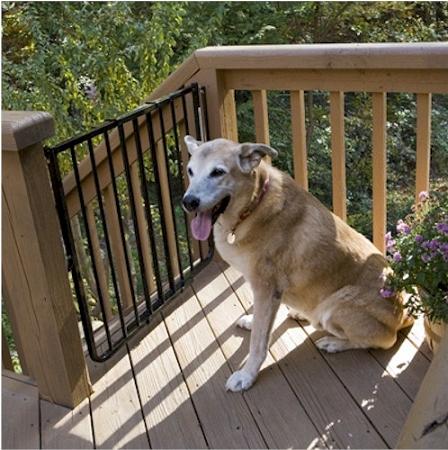Stairway Special Outdoor Pet Gate