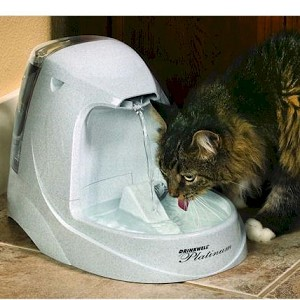 Cats Love Drinkwell Pet Fountains