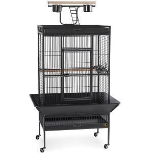 Large Select Wrought Iron Play Top Bird Cage